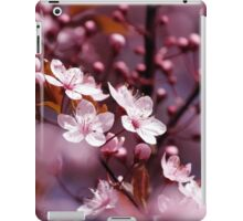 Sakura / Cherry Blossoms iPad Case/Skin