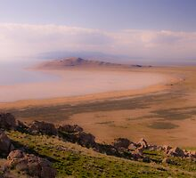 Bright spring on Antelope Island by Robert C Richmond
