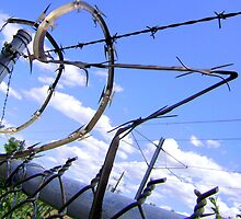 Razor Wire by Dana Roper