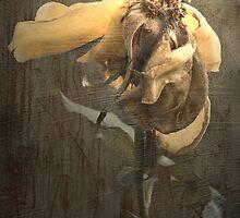 Rust 'n Roses ~  #5 by Rosalie Dale