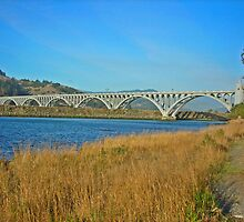 Isaac Patterson Bridge by Bryan D. Spellman