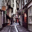 The Shambles by Larry Lingard/Davis