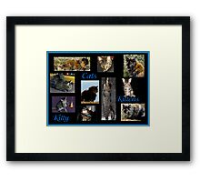 Cats, Kittens, Kitty Framed Print