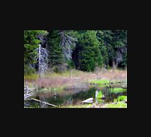 Beauty found at the beaver pond Zipped Hoodie