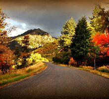 Alpine Loop - After the Rain by Ryan Houston