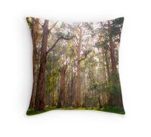Light shining through the trees at Olinda Falls Throw Pillow