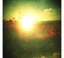 Poppy Remember Photographic Print