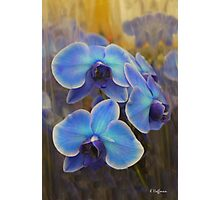 Blue Flame Photographic Print