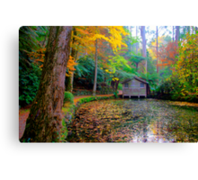 All the colours of the rainbow at Alfred Nicholas Gardens Canvas Print