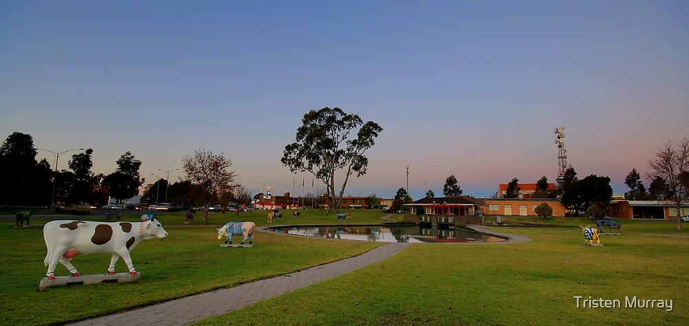 Shepparton park by Tristen Murray