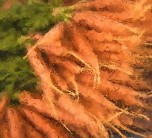 Carrots by garyguthrie