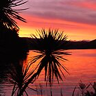 sunset over NZ west coast by Amy Evans