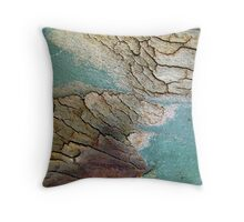 The Lost Islands Throw Pillow