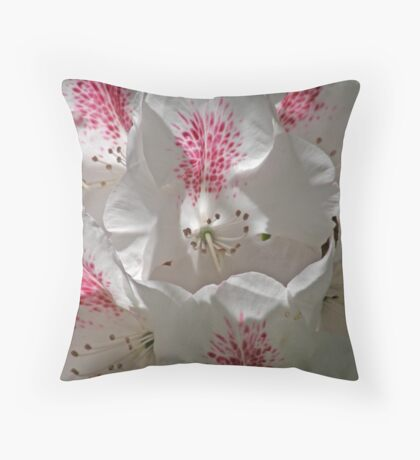 Soaking Up The Sunshine Throw Pillow