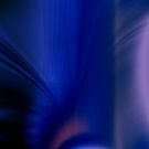 Blue Velvet by Virginia N. Fred
