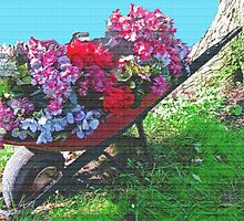 A Textured Wheel Barrow  by Linda Miller Gesualdo