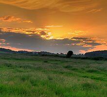 Woodsetts Sunset by David Tait