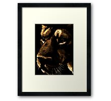 Within the Shadows Framed Print