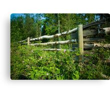 Country Fence ...Summer Style Canvas Print