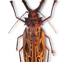 Bug 03 by Ronald Eller