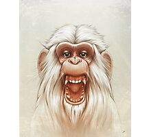 The White Angry Monkey Photographic Print