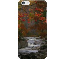 Fall in Coos Canyon iPhone Case/Skin