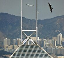 Two kites and a jumbo! by David Clarke