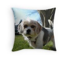 Arnie's Day on the Lawn Throw Pillow