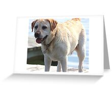 Standing Gaurd Greeting Card