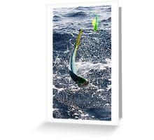 Leaping Mahi Greeting Card