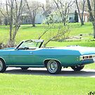 1969 Old Cutlas Supreme-Cherry! by Bea Godbee