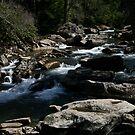 Glade Creek by Fern Design