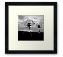 I Wish..... Framed Print
