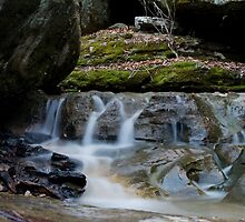 Shanty Hollow State Park  by Ty  Cobb