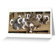 The Gang's All Here Greeting Card