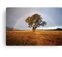 After the Rain, Dunkeld, Australia Canvas Print