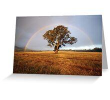 After the Rain, Dunkeld, Australia Greeting Card