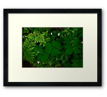 Deep Green Framed Print