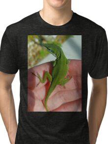 Green Anole Tri-blend T-Shirt