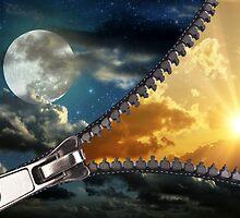 Unzip the Night by Rozalia Toth