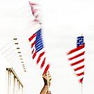 Waving Flags by Buckwhite