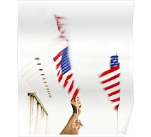 Waving Flags Poster