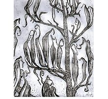 Etching : Flax Pods Gothic Photographic Print