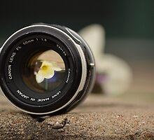 Reverse Photography by Kae'tî Stolarski