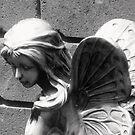 Urban Fairy. by Paul Rees-Jones
