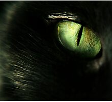 Midnight's Eye Photographic Print