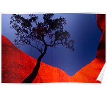 Spiritual Canyon, Uluru, Northern Territory Poster