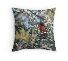 Crimson Breasted Shrike Throw Pillow
