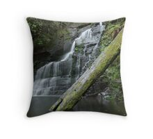 Allambee Beek Falls Throw Pillow