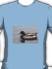 Mallard Duck of Florida T-Shirt